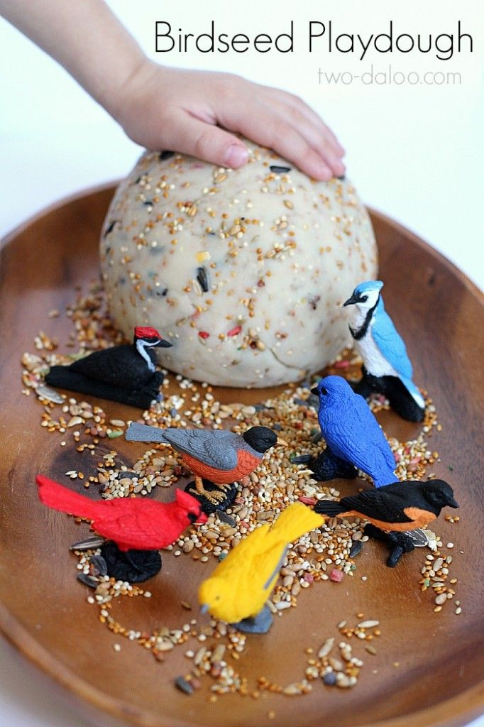 This is a great board for Bird Unit Study resources linked from ChildLedLife.com
