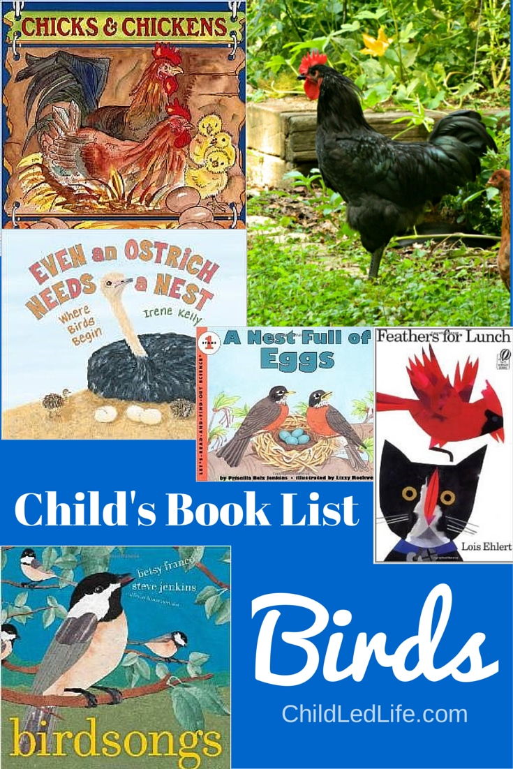 Child's Book List: Birds