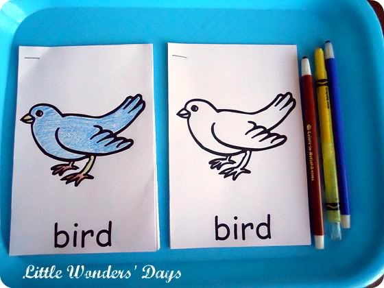 Little Wonders' Days Parts of a Bird Mini Bird Book linked from ChildLedLife.com