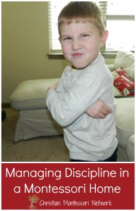 Great resrouces on managing discipline from Christian Montessori Network referance on ChildLedLife.com