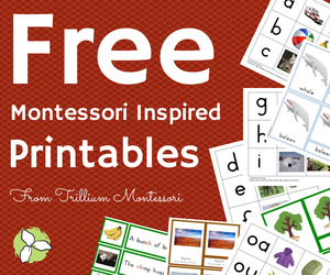 Free-Montessori-Inspired-Printables