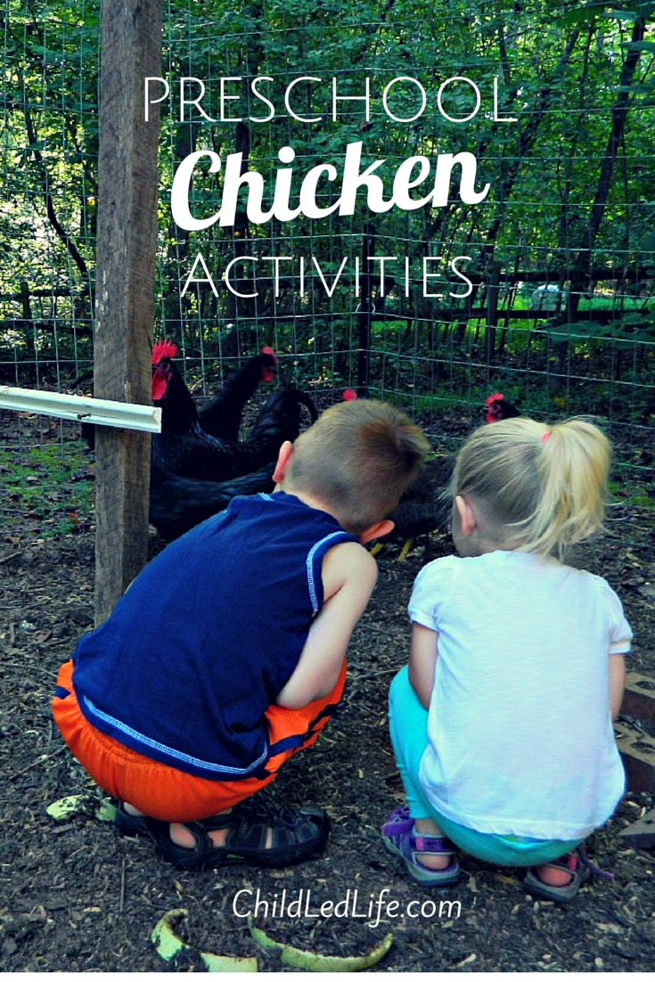 Having backyard chickens has been a lot of fun. Check out some great preschool chicken activities at ChildLedLife.com
