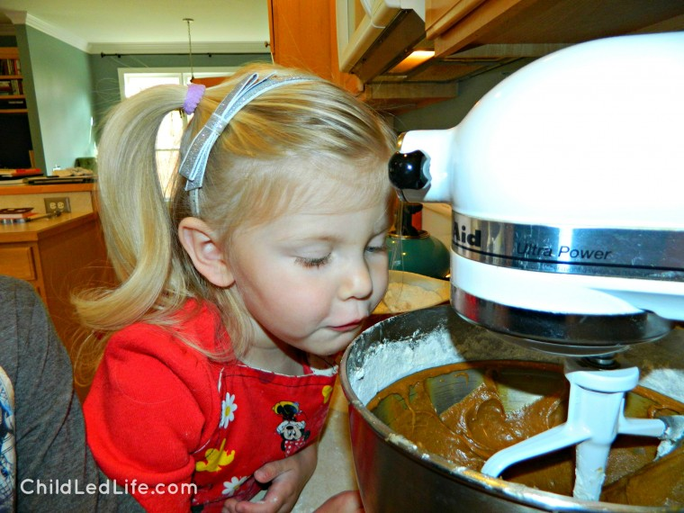 Kids are fascinated with the mixer! Mixing #gingerbread cookie dough on ChildLedLife.com