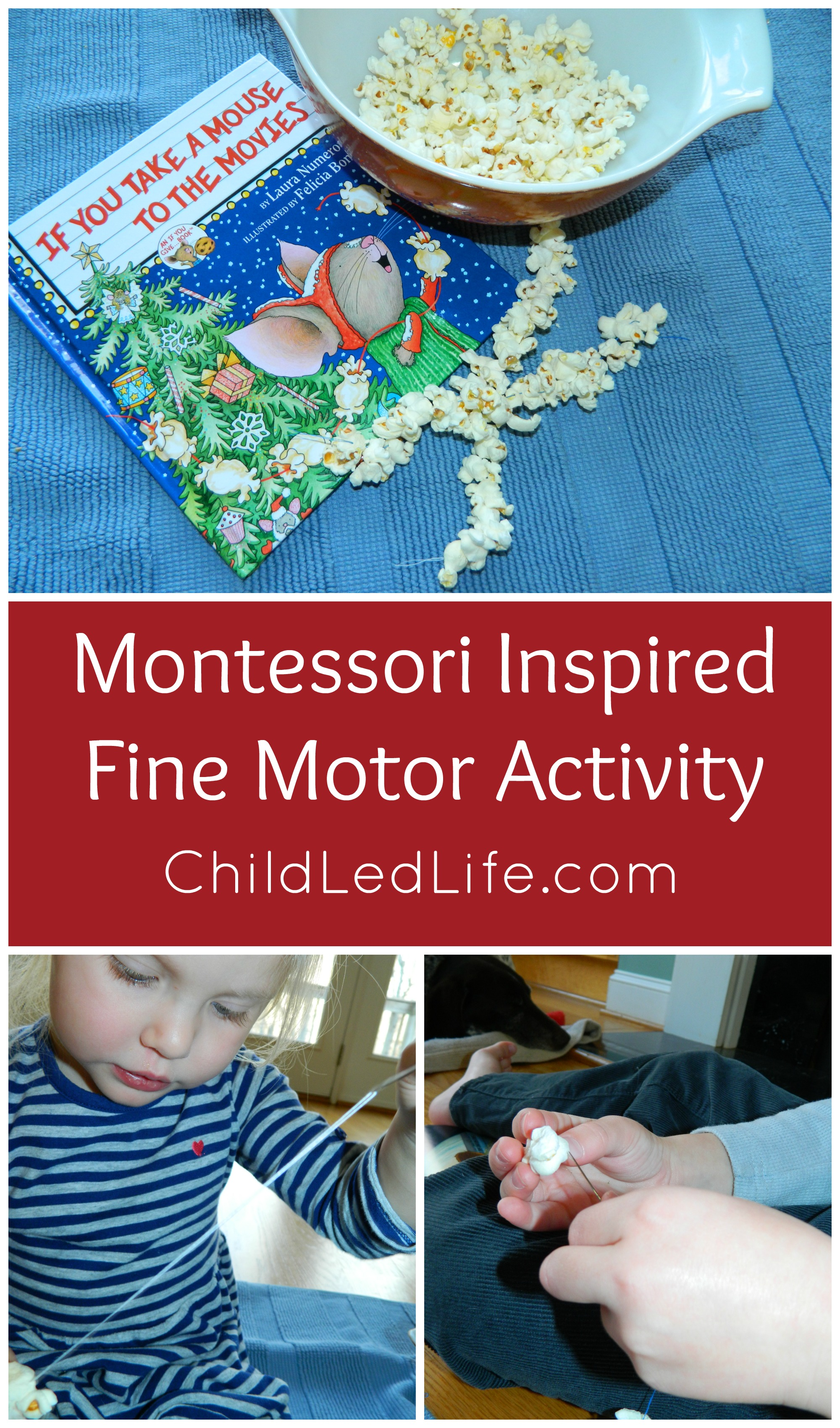 Montessori inspired fine motor activity to accompany If You Take a Mouse to the Movies. Creating a popcorn string is a great fine motor skill for kids on ChildLedLife.com