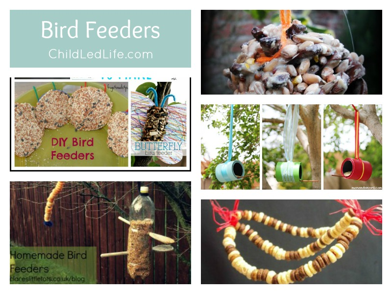 9 Fun Posts on creating DIY bird feeders to help your kids welcome Spring Birds on ChildLedLife.com