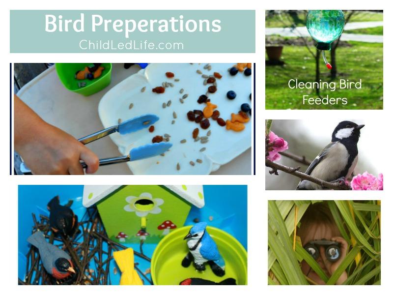 7 Fun Ways to Prepare for Spring Birds on ChildLedLife.com