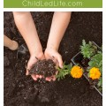 Introduce children to gardening by planting the seed! Find a great lesson on ChildLedLife.com