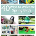 40 Ways to Welcome Spring Birds! DIY Bird Feeders, learning activities, crafts, and so much more on ChildLedLife.com
