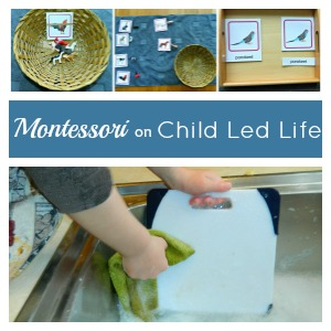 Montessori on ChildLedLife.com
