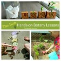 Hands on lessons for exploring botany on ChildLedLife.com
