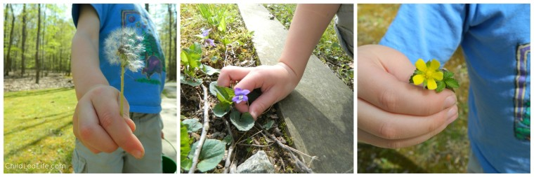 Nature walks are a great hands on way to explore botany on ChildLedLife.com