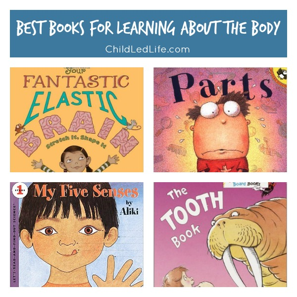 The Best Books for Learning About the Body on ChildLedLife.com